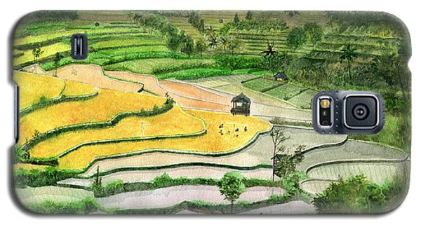 Ricefield Terrace II Galaxy S5 Case by Melly Terpening