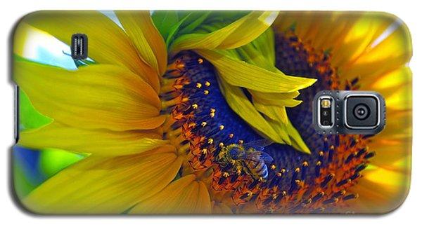 Rich In Pollen Galaxy S5 Case by Gwyn Newcombe