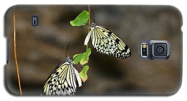 Galaxy S5 Case featuring the photograph Right And Left Wings by Teresa Blanton