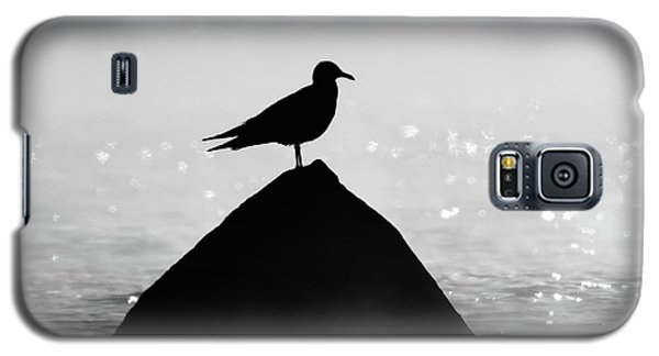 Ring-billed Gull Silhouette Galaxy S5 Case