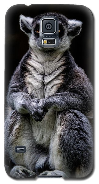 Galaxy S5 Case featuring the photograph Ring Tailed Lemur by Chris Lord