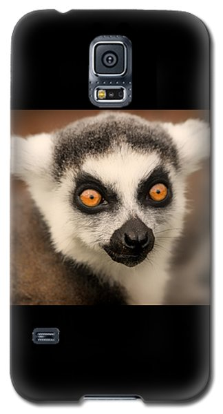 Galaxy S5 Case featuring the photograph Ring Tailed Lemur Portrait by Chris Boulton