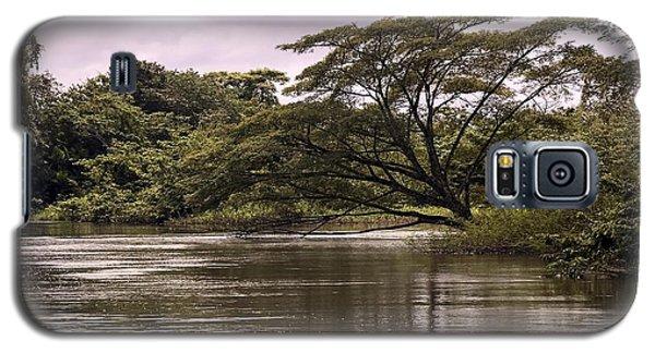 Riparian Rainforest Canopy Galaxy S5 Case