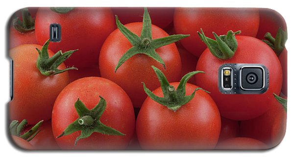 Galaxy S5 Case featuring the photograph Ripe Garden Cherry Tomatoes by James BO Insogna