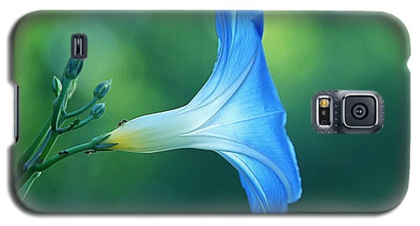 Galaxy S5 Case featuring the photograph Rise And Shine by Byron Varvarigos