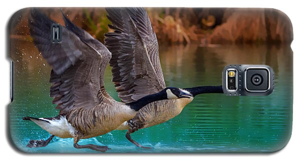 Rise Of Flight Galaxy S5 Case