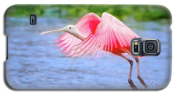 Rise Of The Spoonbill Galaxy S5 Case by Mark Andrew Thomas