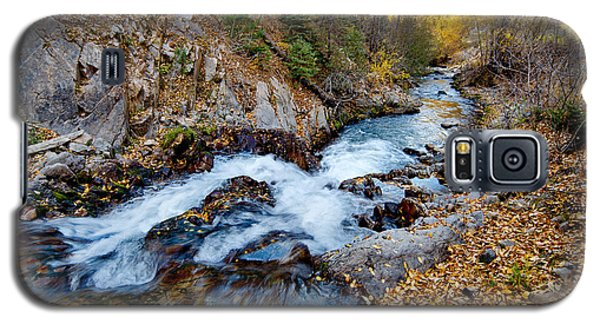 River In Autumn Galaxy S5 Case