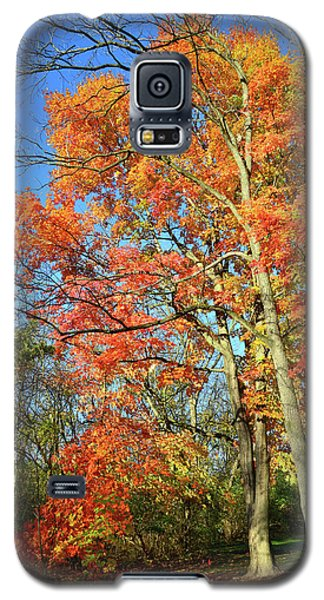 Galaxy S5 Case featuring the photograph River Road Maples by Ray Mathis