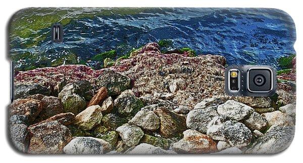 River Rocks Galaxy S5 Case