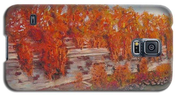 River Tiber In Fall Galaxy S5 Case