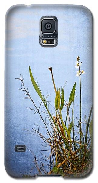 Riverbank Beauty Galaxy S5 Case by Carolyn Marshall