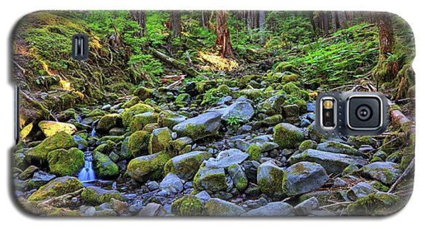 Riverbed Full Of Mossy Stones With Small Cascade Galaxy S5 Case