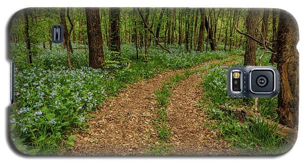 Road Through The Woods Galaxy S5 Case