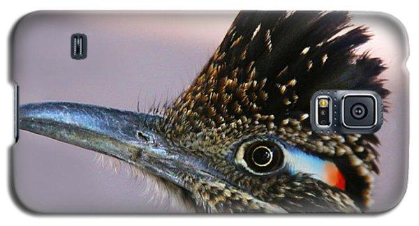 Roadie 2 Galaxy S5 Case by Dan Redmon