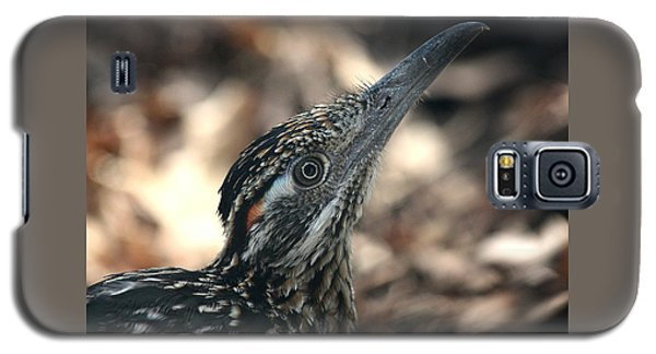 Roadrunner Close-up Galaxy S5 Case