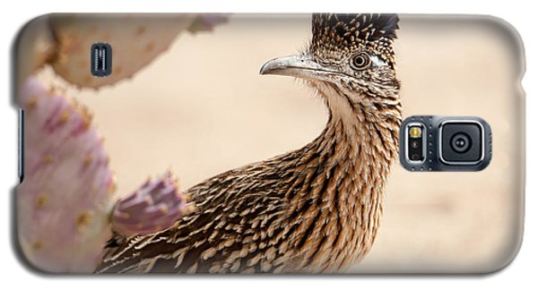 Galaxy S5 Case featuring the photograph Roadrunner by Dan McManus