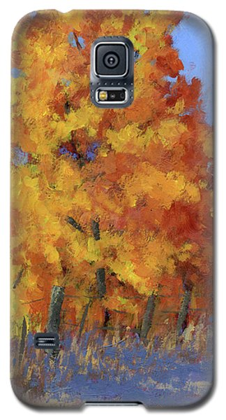 Roadside Attraction Galaxy S5 Case
