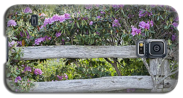 Galaxy S5 Case featuring the photograph Roan Mountain Azaleas by Tyson and Kathy Smith