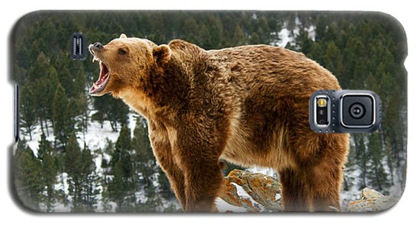 Roaring Grizzly On Rock Galaxy S5 Case