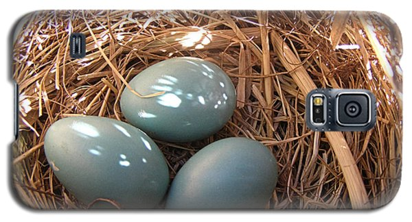 Galaxy S5 Case featuring the photograph Robin Eggs by Angie Rea