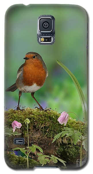Robin In Spring Wood Galaxy S5 Case