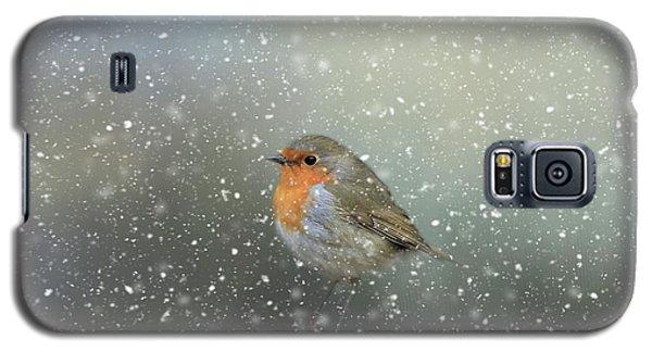 Robin In Winter Galaxy S5 Case