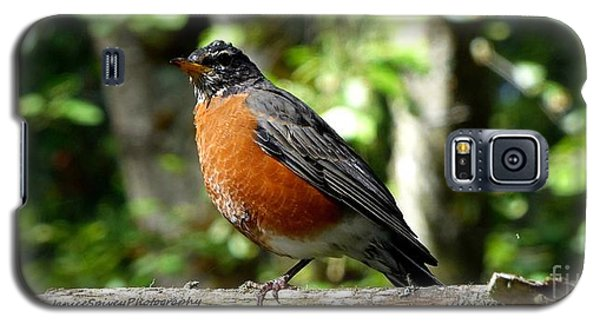 Galaxy S5 Case featuring the photograph Robin by Janice Spivey