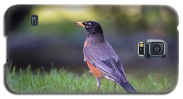 Galaxy S5 Case featuring the photograph Robin by Kathy King
