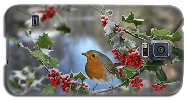 Robin On Holly Branch Galaxy S5 Case