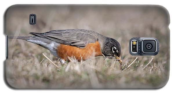 Galaxy S5 Case featuring the photograph Robin Pulling Worm by Tyson Smith