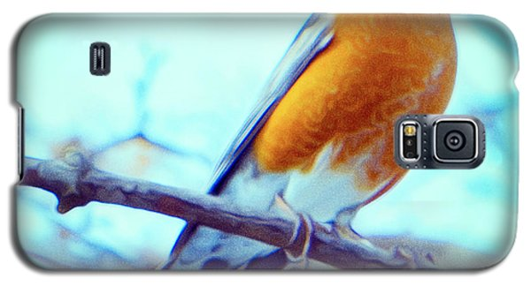 Robin Red Breast In Winter - Impressionism Galaxy S5 Case