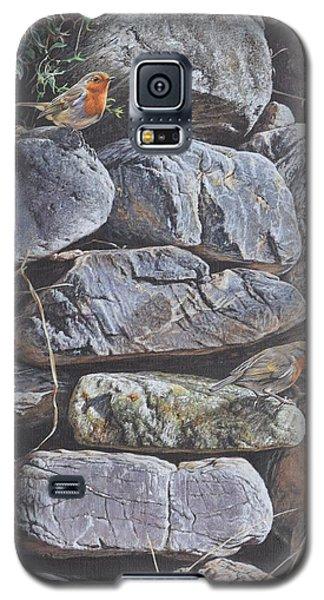 Robins Galaxy S5 Case
