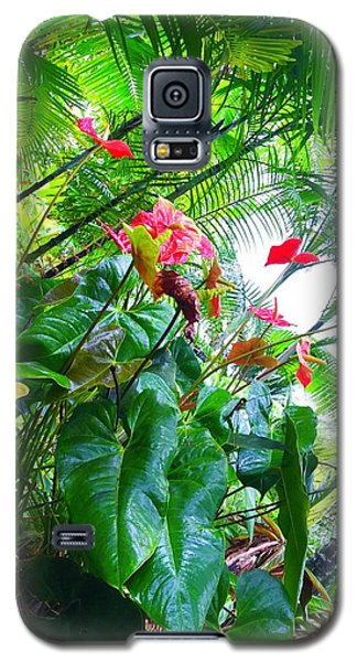 Robins Garden With Anthuriums And Ferns Galaxy S5 Case