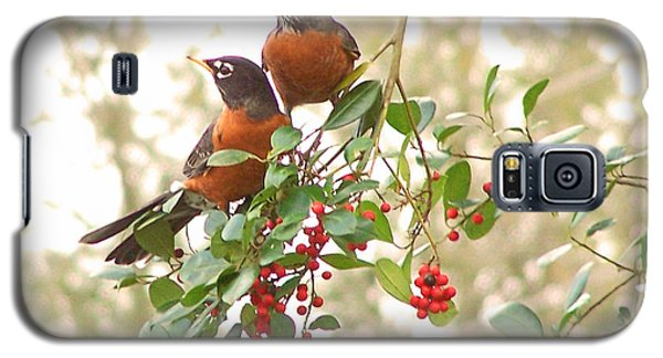 Robins In Holly Galaxy S5 Case
