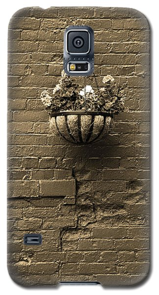 Galaxy S5 Case featuring the photograph Rochester, New York - Wall And Flowers Sepia by Frank Romeo