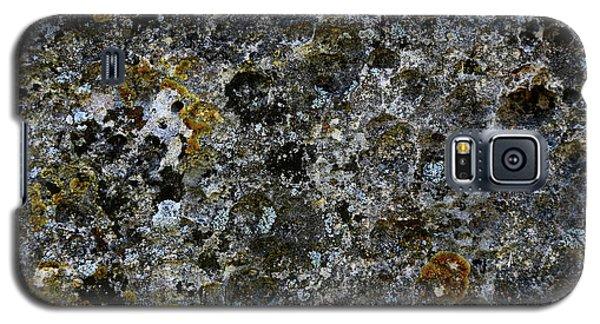 Rock Lichen Surface Galaxy S5 Case by Nareeta Martin
