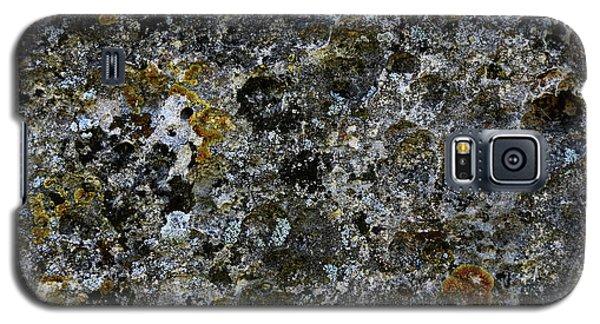Rock Lichen Surface Galaxy S5 Case