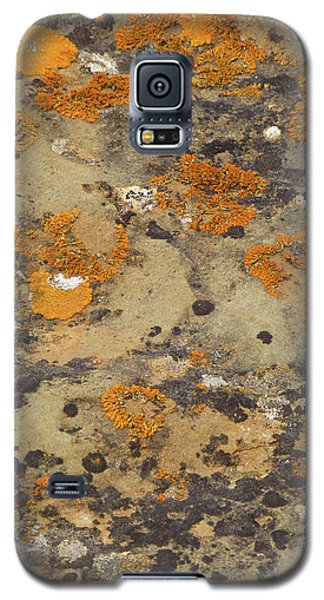 Rock Pattern Galaxy S5 Case