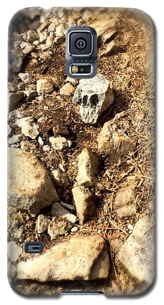 Rock Skull Galaxy S5 Case