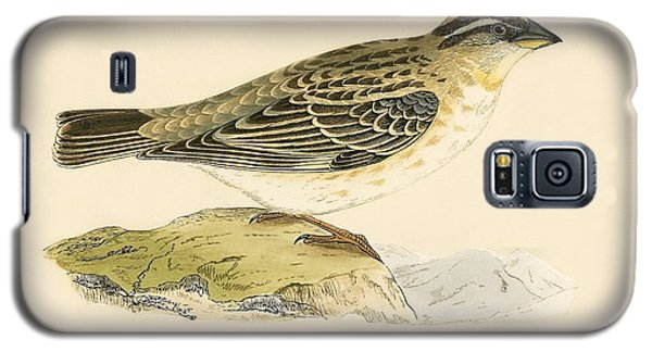 Rock Sparrow Galaxy S5 Case by English School