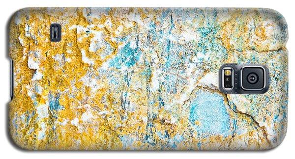 Rock Texture Galaxy S5 Case by Tom Gowanlock