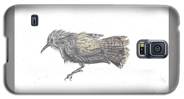 Rock Wren Galaxy S5 Case by Dawn Senior-Trask