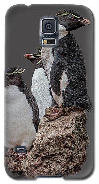 Rockhopper Penguins Galaxy S5 Case