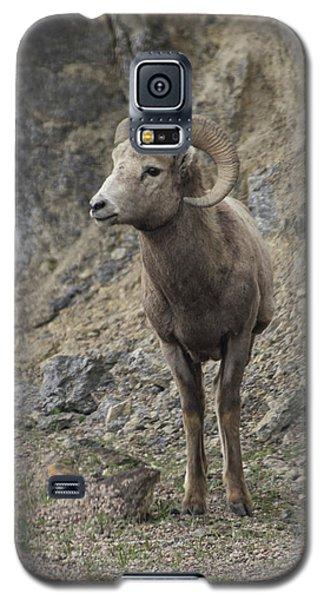 Rockies Big Horn Galaxy S5 Case