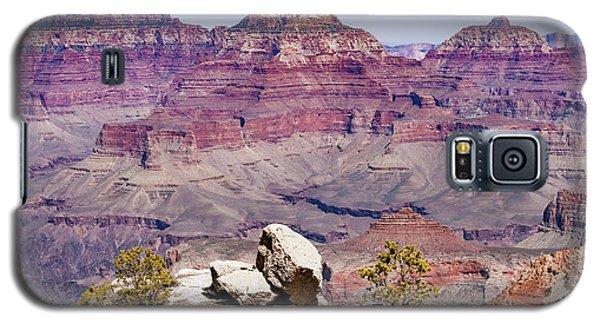 Rockin' Canyon Galaxy S5 Case