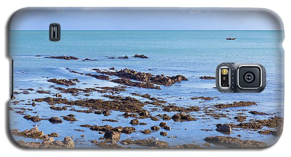 Galaxy S5 Case featuring the photograph Rocks And Seaweed And Seagulls In The Irish Sea At Howth by Semmick Photo
