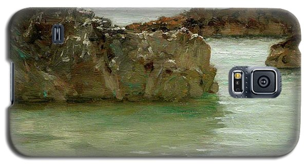 Galaxy S5 Case featuring the painting Rocks At Newport by Henry Scott Tuke