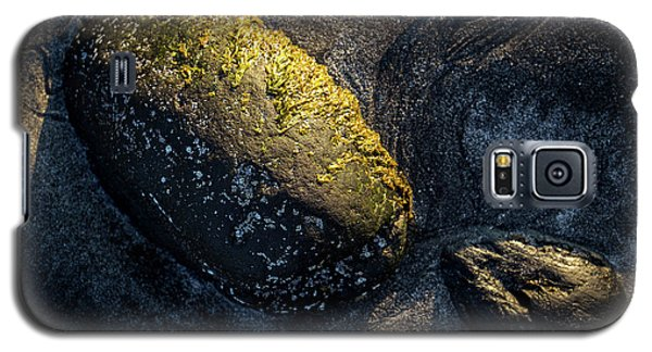 Galaxy S5 Case featuring the photograph Rocks From Talisker Beach 1 by Davorin Mance