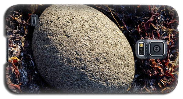 Galaxy S5 Case featuring the photograph Rocks From Talisker Beach 4 by Davorin Mance